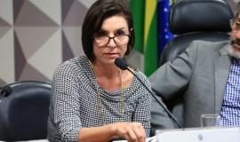 """Simone Scholze, da Samsung Brasil: """"O mérito fundamental da medida é permitir que os recursos permaneçam no setor de P&D"""""""