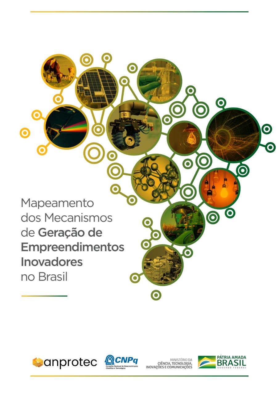 Mapeamento dos Mecanismos de Geração de Empreendimentos Inovadores no Brasil